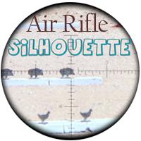 رکورد های تیراندازی سیلوئت (Silhouette)