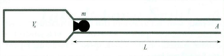 بالستیک داخلی در تفنگ بادی